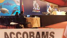 COP12_CMS - The ACCOBAMS Permanent Secretariat at the 12th Conference of the Parties to the Convention on the Conservation of Migratory Species of Wild Animals © ACCOBAMS