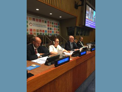 Sustainable Development Goals: Prince's Government presents national voluntary review to UN