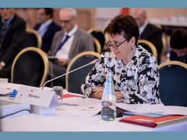 Monaco Takes Part in the 4th High-Level Meeting of the WHO's Small Countries of Europe Initiative